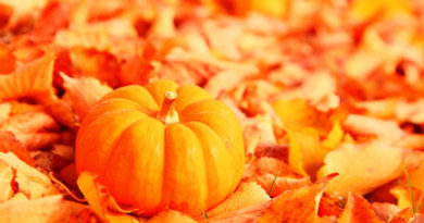 oktyabr-oranzhevyiy